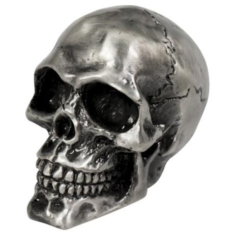 Soška Highway Hawk Cracked Skull